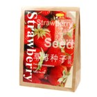 Strawberry Desktop Growing Kit (Complete with Seeds)