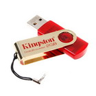 Kingston DataTraveller USB Flash/Jump Drive (2GB Limited Edition)