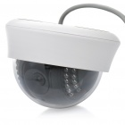 P2P 300KP CMOS Network Surveillance ID Camera w/ 22-LED IR Night Vision - Black + White