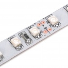 Car Decorative 48W 1500MCD 600-3528 SMD LED Green Light Strip (DC 12V/5M)