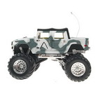 Mini R/C Rally Model Car