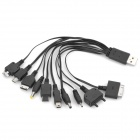 10-in-1 Multi-Functional USB Power Charging Cable for Mobile Phone - Black