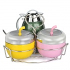 Stainless Steel Seasoning Cans Set with Spoons & Holder