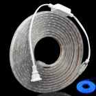 Waterproof 24W 300 x 3528SMD LED Blue Light Strip (AC 220V / 5M)