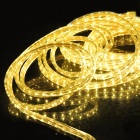 Waterproof 48W Warm White 600*3528 SMD LED Light Strip (110~220V/ 10m)