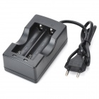 OEM 2*18650 Lithium Battery Charger (110V~240V AC)