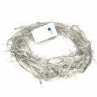 10-Meter Warm White LED String 