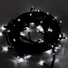 Decoración 6W 100-LED White Party String Light para Navidad - Negro (AC 220V / 10 m)