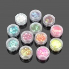 Decorative DIY Nail Art 12-in-1 Glitter Set - Multicolored