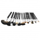 EMILY Professional 22-in-1 Cosmetic Makeup Brushes Set w/ Case - Black
