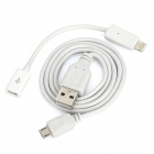 8-Pin Lightning Male to Micro USB Female Adapter + Micro USB Cable Set for iPhone 5 (70cm / 170cm)
