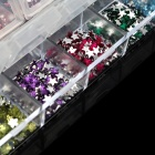 Five-Pointed Star Shaped 12-in-1 Acrylic Nail Art / Decoration Sticker Set - Multicolored