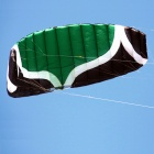 QUNLON W5 5-Sqm Power Dual Line Parachute Kite for Beginner - Green + White + Black