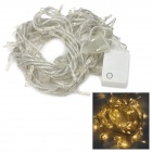 Decoration 6W 100-LED Party Warm White String Light for Christmas - Translucent (AC 220V / 10m)