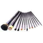MEGAGA Professional Beauty Cosmetic Makeup Brush Set with Case (13 PCS)