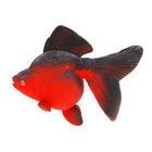 Grow-in-Water Fish Toy
