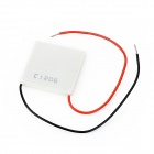 C1206 Telluride Semiconductor Cooling Piece (40 x 40mm / DC 12V)