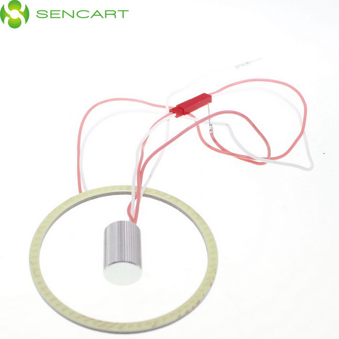 SENCART Ring Shape 1000lm 7500K 81-LED Cool White Light Angel Eyes Ceiling / Wall Lamp (12~24V)