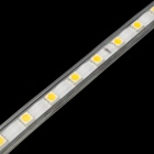 72W 4000lm 300-SMD 5050 Warm White Decoration Light Strip (5M / 2-Round-Pin-Plug / AC 220V)