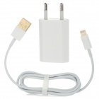 2 in 1 EU Plug Charger + vergoldet USB Blitz-Kabel für iPhone 5