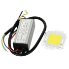 20W 1900lm 6500K White Light LED Module w/ LED Driver (100~240V)