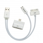 USB Male to 30-Pin / Micro USB Male Cable+ 30-Pin / Micro USB Female to Lightning 8-Pin Male Adapter