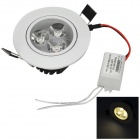 3W 250lm 3200K 3-LED Warm White Light Ceiling Lamp - Silver (85~265V)