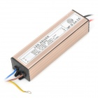 HDX 10-Series-5-Parallel 50W LED Drive Power Supply - Champagne + Black