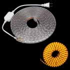 ZiYu JB056 Waterproof 60W 4500lm 300-5050 SMD Yellow Light Strip (5m / AC 220V / 2-Flat-Pin Plug)