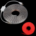 ZIYU JB053 60W 4500lm 300-SMD 5050 LED Red Light Strip - White (5m / AC 220V / 2-Flat-Pin Plug)