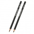Fashion Cosmetic Waterproof Eyeliner Pencil - Coffee (2 PCS)