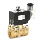 Outdoor Waterproof Brass Normally Closed Solenoid Valve (AC 220V)