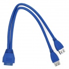 20 Pin to Dual USB3.0 Extension Data Cable - Blue (30 CM)