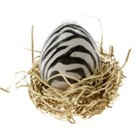 Magic Egg in Gift Box (Growing Plant with Message)