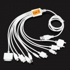 10-in-1 Multi-Function USB Charging Cable for iPhone + Samsung + More - White (100 CM)