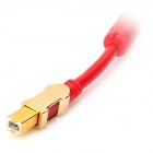 Jin Bai Jia 480Mbps USB 2.0 Printing Cable for Printer - Red (500cm)
