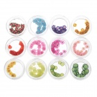 DIY 12-in-1 Nail Art Decoration Color Fruit Slices Set - Multicolored