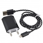 EU Plug Charger Adapter + Lightning 8-Pin Male to USB 2.0 Male Flat Data Cable for iPhone 5c - Black