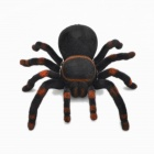 309 2-Channel Remote Controlled Spider - Black + Red (4 x AA)