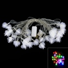 Colorful LED Light for Christmas - White