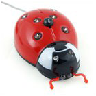 Decorative Lady Bug 10 Multicolored LED for Vehicles