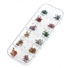 DIY 12-in-1 Dried flowers Nail Art Decoration Set - Multicolored