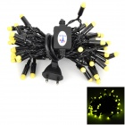 Kakashi PL-11 4W 250lm 50-LED Yellow String Light (AC 220V / 5m /  EU Plug)