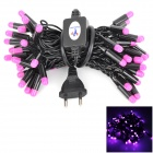 Kakashi PL-13 4W 250lm 50-LED Purple String Light (AC 220V / 5m / EU Plug)