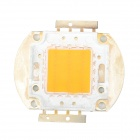 JRLED 30W 800lm 1-LED Pink Light Plant Lamp Module - Silver (32~36V)
