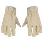 Wear-Resistant Head Layer Cowhide Gloves for Driver / Porter - Beige (Pair)