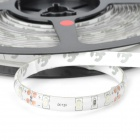 3528 Waterproof 12W 900lm 300-3528 SMD LED Red Light Strip (5m / DC 12~24V)
