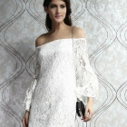 Women's Round Neck Lace Lady Slim Mini Dress