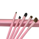 Portable 5-in-1 Cosmetic Make-up Brushes Set - Pink