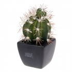 EZZE EZ-12-E Melon Cactus Deodorizing & Refreshing Activated Charcoal Diffuser - Black + Green